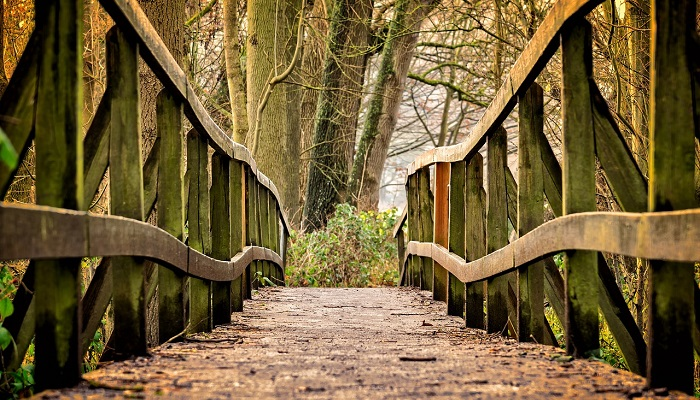 木でできた橋